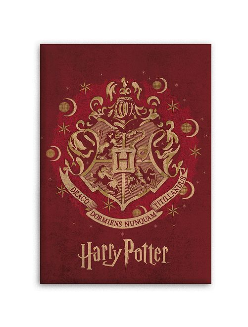 Fleecedeken van 'Harry Potter'                             bordeaux